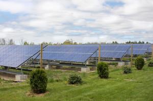 A jövő a napelemekben és a napenergiában van.