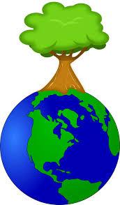Miben segít nekünk az ökológia?