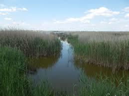 Mi a természetvédelmi terület előnye?