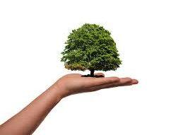 környezettudatosság