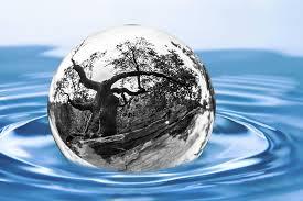 Egy komoly tudományterület a környezetvédelem